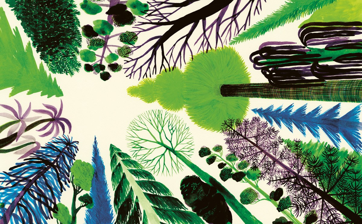 The Healing Power of Gardens: Oliver Sacks on the Psychological and Physiological Consolations of Nature 3