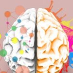 When Real Learning Happens in the Brain, According to Neuroscience 3