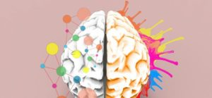When Real Learning Happens in the Brain, According to Neuroscience 14