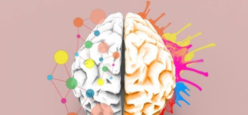 When Real Learning Happens in the Brain, According to Neuroscience 4