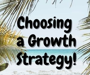 Choosing a Growth Strategy