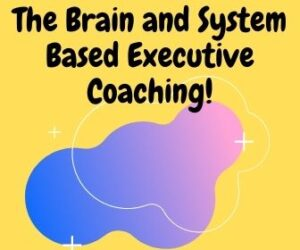 The Brain and System Based Executive Coaching